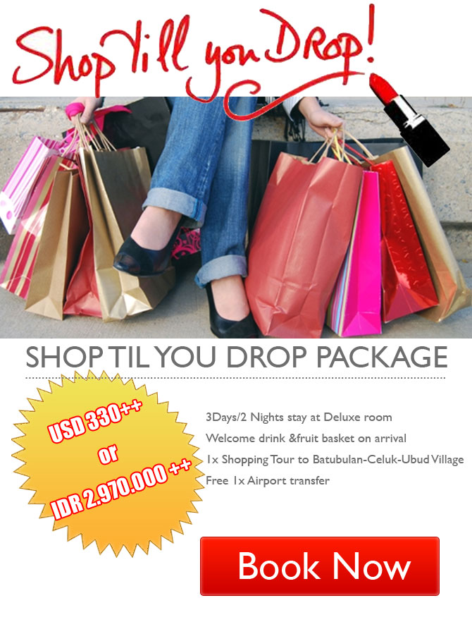 Shop Til You Drop Package
